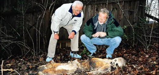 William Marvin Bass III, left, (born August 30, 1928) is an American forensic anthropologist