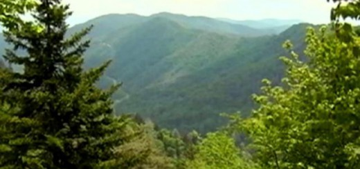 National Park officials prepare for Appalachian Trail
