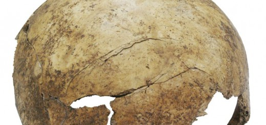 PREHISTORIC MASSACRE Scientists discover 7,000-year-old mass grave site-media-1