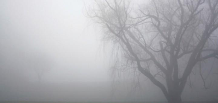 Heavy Fog in the morning